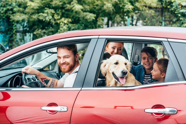 ביטוח רכב פרטי